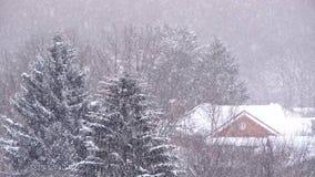 降雪在冬天在城市,与落的雪的软的多雪的圣诞节早晨 股票视频