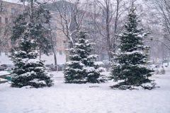 降雪在城市 恶劣天气情况 把城市报道的横向雪结构树都市冬天换下场 图库摄影