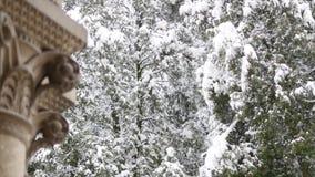 降雪在森林公园 冬天风景在积雪的公园 影视素材