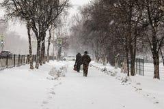 降雪在11月 图库摄影