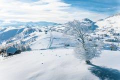 降雪在Rucar麸皮通行证的罗马尼亚传统村庄Pestera在喀尔巴汗 免版税库存照片