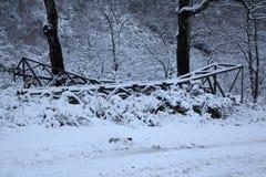 降雪的路 免版税库存照片