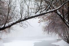 降雪的风景在公园 库存图片