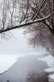 降雪的风景在公园 免版税库存图片