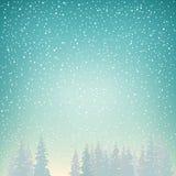 降雪,雪在云杉落 库存图片