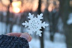 降雪, 1月或冬天概念,拿着雪花的手 免版税库存图片