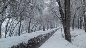 降雪2017年在克什米尔 我喜欢这个地方 免版税库存图片