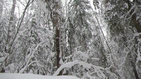 降雪 33c 1月横向俄国温度ural冬天 股票录像