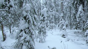 降雪 33c 1月横向俄国温度ural冬天 股票视频