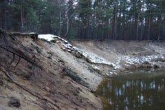 陡坡在森林里 免版税库存照片