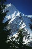 陡峭包括的山腰的雪 免版税图库摄影
