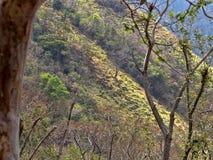 陡峭的小山在萨尔瓦多 库存图片