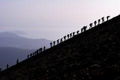 陡峭的山坡的登山人 库存图片