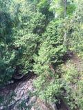 陡峭的岩石峭壁边 库存图片
