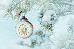 除夕背景-显示在多雪的杉树的新年圣诞节玻璃玩具时钟除夕, 免版税库存照片