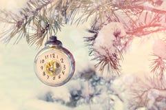除夕背景-以显示在多雪的杉树的时钟的形式新年玻璃圣诞节玩具除夕, 库存图片