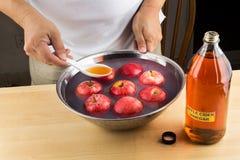 去除杀虫剂的苹果汁醋有效的自然补救 库存照片