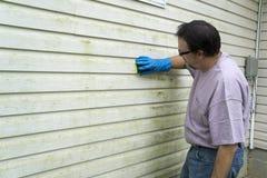 去除海藻和模子的承包商从乙烯基房屋板壁 免版税库存图片