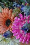 除芯庭院的花美丽的布料花束  库存照片