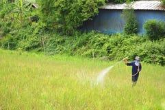 除草药喷洒农夫领域 库存图片