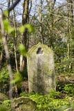 陶尔哈姆莱茨公墓公园在伦敦,英国 图库摄影