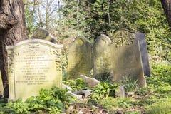 陶尔哈姆莱茨公墓公园在伦敦,英国 库存图片