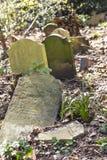 陶尔哈姆莱茨公墓公园在伦敦,英国 免版税库存图片