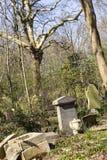 陶尔哈姆莱茨公墓公园在伦敦,英国 库存照片