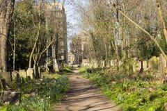 陶尔哈姆莱茨公墓公园在伦敦,英国 免版税库存照片