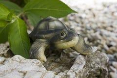 陶瓷乌龟坐岩石 库存图片