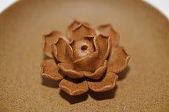 陶瓷在陶瓷板材上升了 库存照片