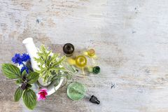 陶瓷灰浆用草本和新鲜的药用植物老白色木tboard的 药用植物为做准备 库存照片
