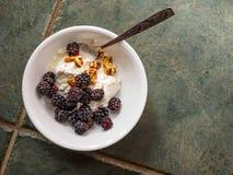 陶瓷碗用酸奶、被碰撞的核桃和黑莓在a 库存照片