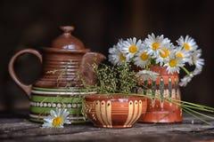 陶瓷碗筷和春黄菊 免版税库存照片