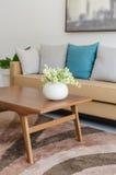 陶瓷花瓶的植物在与现代沙发的木桌上 免版税库存照片