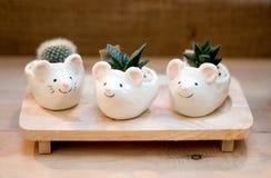 陶瓷花瓶装饰庭院架子 免版税库存照片
