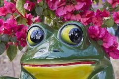 陶瓷青蛙特写镜头与九重葛花的 免版税图库摄影