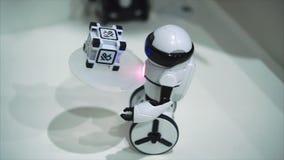 陶里亚蒂,俄罗斯- 2017年7月21日:运载一点立方体的白矮小的机器人侍者 电子机器人玩具的概念 股票视频