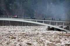 陷进的冰在残暴的人河在残暴的人, Latvija城市 图库摄影