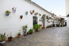 隆隆声de Becerro村庄Cazorla西班牙 库存照片