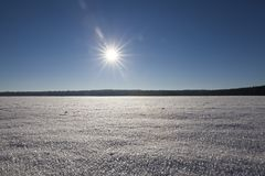 随风飘飞的雪在冬天 免版税库存图片