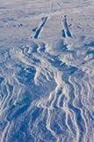 随风飘飞的雪轮胎跟踪 库存图片