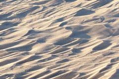 随风飘飞的雪,一个领域在冬天 免版税库存照片
