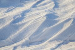 随风飘飞的雪,一个领域在冬天 库存照片