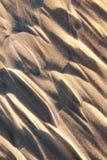 随风飘飞的雪,一个领域在冬天 免版税库存图片