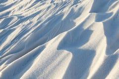 随风飘飞的雪,一个领域在冬天 免版税图库摄影