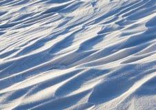 随风飘飞的雪,领域在冬天 库存照片