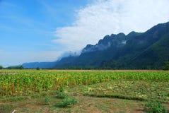 隐瞒孔Lor洞的山在中央老挝 库存图片
