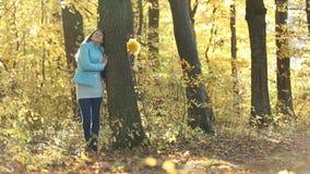 隐藏在结构树之后的女孩 股票录像