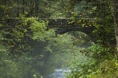 隐藏的桥梁 免版税库存照片